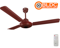 Ecotech Ceiling Fan with BLDC Motor