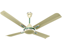 Quadro Ornamental Ceiling Fan