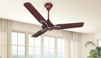 Cleaning tips for ceiling fans